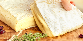 Cheese Product Category Image
